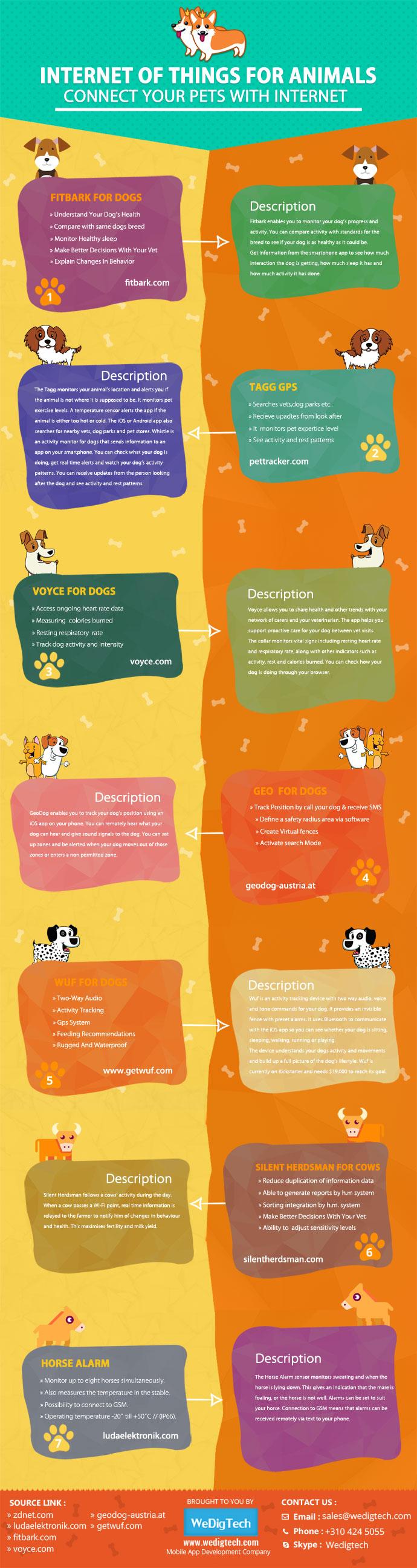 Internet of Animals