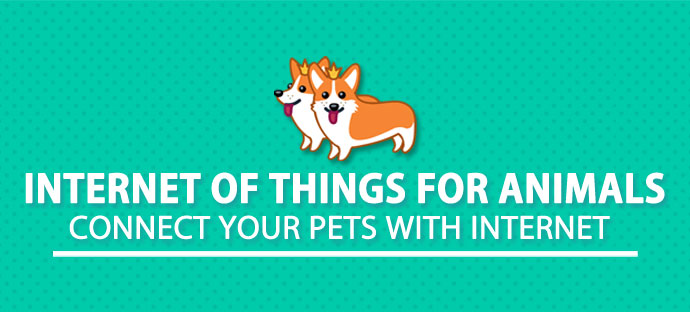 Internet of Things for Animals